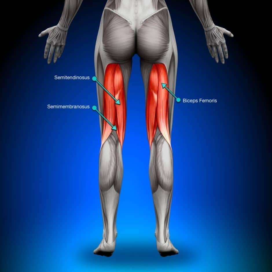 کشیدگی عضلات همسترینگ در ورزش